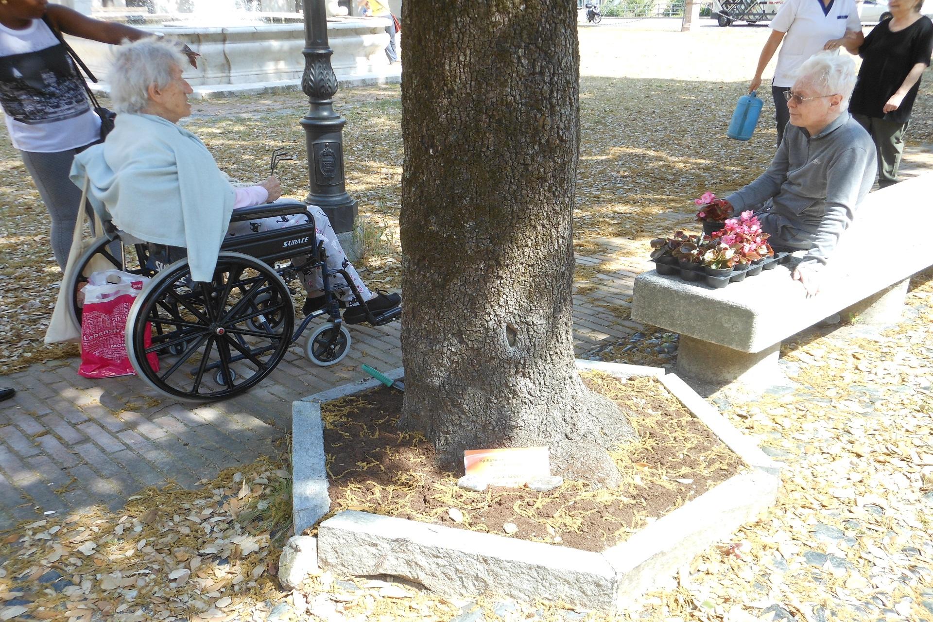 Festa del Santuario Residenza Protetta Santuario e Residenza Sanitaria Assistenziale Noceti | Opere Sociali Servizi Savona