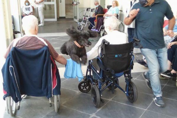 Pet Therapy - Residenza Protetta Bagnasco - Opere Sociali Servizi Savona